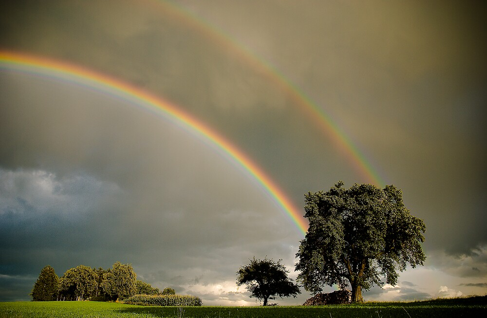 Double Rainbow! by niklens
