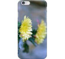 Chrysanthemum losing hope iPhone Case/Skin