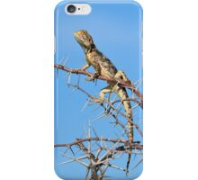 Spiny Agama - Lizard Blues of Fun iPhone Case/Skin