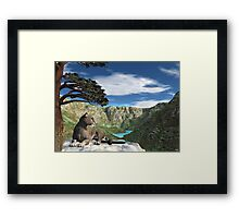 Cougar Canyon Framed Print