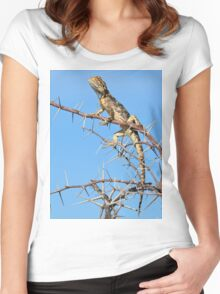 Spiny Agama - Lizard Blues of Fun Women's Fitted Scoop T-Shirt