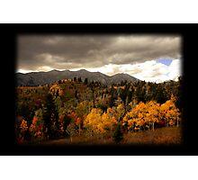 Golden Aspen on Nebo Loop Photographic Print