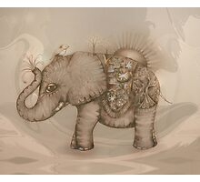 Magic Elephant Photographic Print