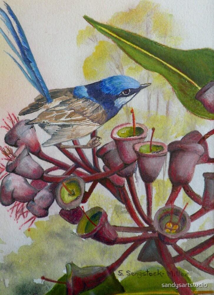 Blue Wren on Gum Nuts  (Sold) by sandysartstudio