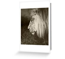 Quiet thoughts Greeting Card