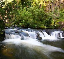 Millstream, Ravenshoe by Erland Howden