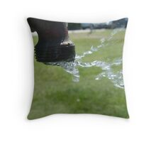 As the wind blows the water flows  Throw Pillow