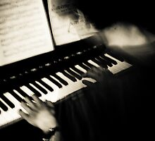 The Pianist by Mohammed Al-Ibrahim