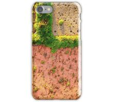 Finding Niches iPhone Case/Skin