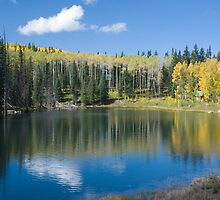 Glacier Lake, Grand Mesa, Colorado by bluerabbit