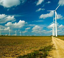 Wind Power by Tim Ray