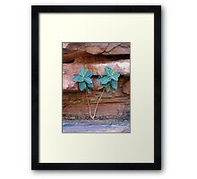 Struggling to survive Framed Print