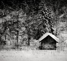 Hut at a lake by Kurt  Tutschek