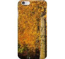 Maples of Kensington - Look up, way up iPhone Case/Skin