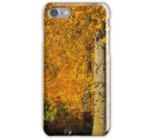 Maples of Kensington - Look up, way up iPhone Case/Skin