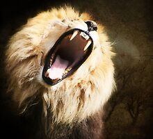 Roar by Naomi Mawson