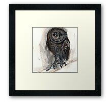 Upright Owl Act 1 Framed Print