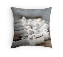 Seagulls at Wynnum Throw Pillow