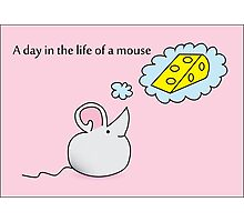 A Day in the Life of a Mouse Photographic Print