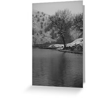 cold day fishing Greeting Card