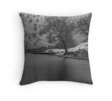 cold day fishing Throw Pillow