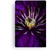Flower universe Canvas Print