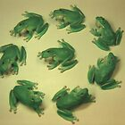 Green Tree Frog Circle by John Hansen