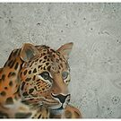 Leopard - Pattern of Life by Cherie Roe Dirksen