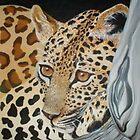 Leopards Stare by Cherie Roe Dirksen