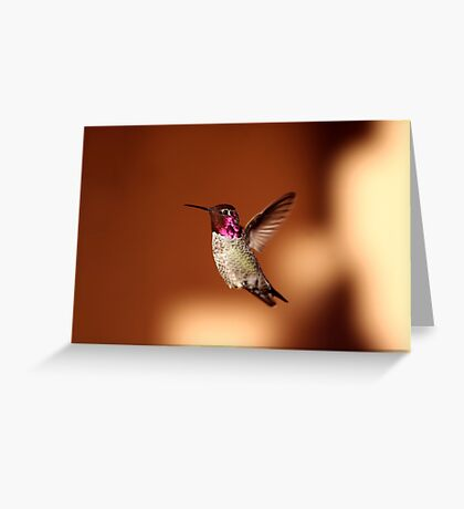 Hummer Flight Greeting Card