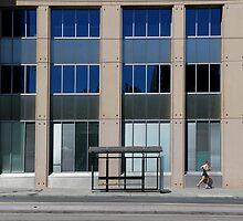 Running on Windows by Stephen Mitchell