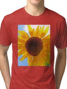Summer's Gold Tri-blend T-Shirt