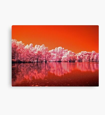 Tree's On Mars Canvas Print