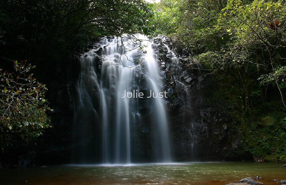 Ellinja Falls, Far North Qld by Julie Just