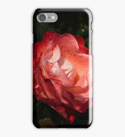 A Gift From My Mother's Garden - Chiaroscuro Rose iPhone Case/Skin