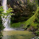 Garden of Eden by Varinia   - Globalphotos