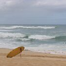 Lonely Surf by J. Sprink