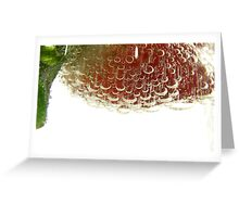 fizzy Greeting Card