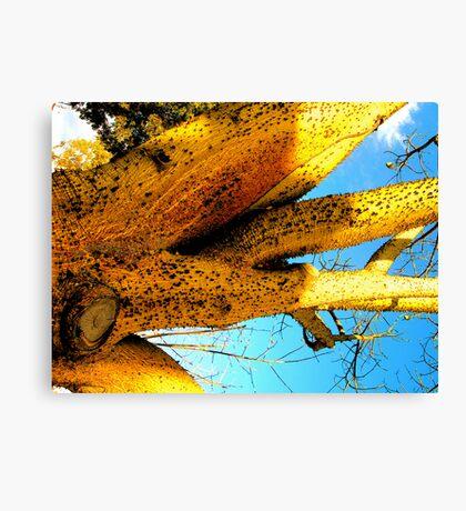 Alien Cacti Canvas Print