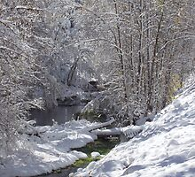 An Early Snow in Spearfish Canyon by eltotton