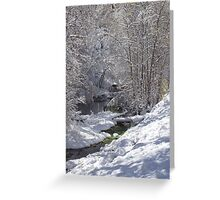An Early Snow in Spearfish Canyon Greeting Card