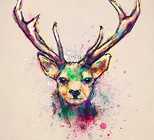 Young Stag by tracieandrews