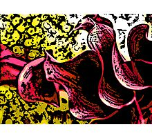 Chatter - Woodcut Photographic Print
