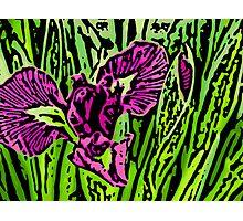 Garden Dragon - Woodcut Photographic Print