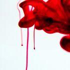 Red by Janine  Hewlett