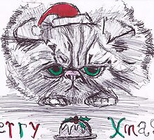 Grumpy Christmas Cat in a hat by HannahLstaples