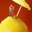A Couple In Lemon Rain by Paul Ge