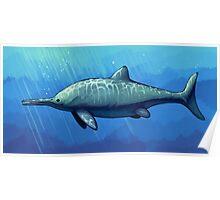Ichthyosaurus communis Poster