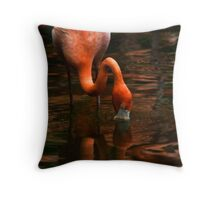 Deep Reflections Throw Pillow