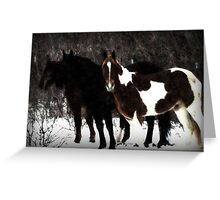 Christmas Eve Horses Greeting Card